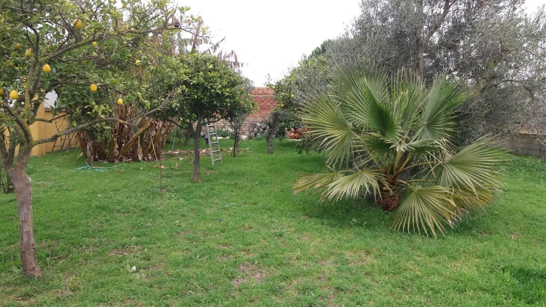 Terreno rústico en Ctra Chipiona